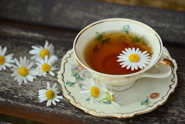 Zioła, które pomagają. Te zioła warto mieć w domu, fot. Pixabay.com