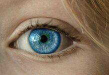 PayEye. Na czym polega płatność okiem? fot. Pixabay.com