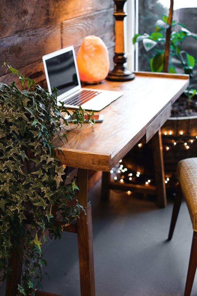 Lampa solna, fot. Pexels.com